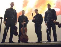 Bell'arte Strings